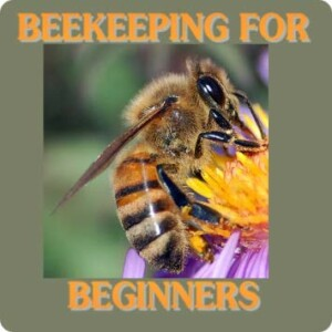 free-beekeeping-app-for-beginners