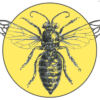 Group logo of Certified Beekeepers Level I